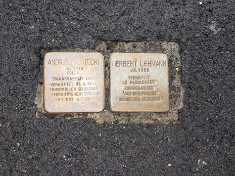 Stumbling blocks laid in front of the clinic in memory of victims of National Socialism (Herbert Lehmann, 2008; Andrzej Rostecki, 2017)