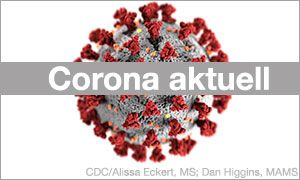Illustrationsbild Corona-Virus